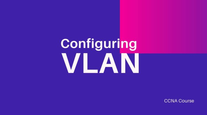 Configuring Virtual Local Area Networks (VLANs)