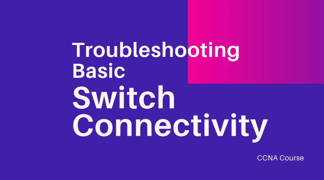 troubleshooting basic switch connectivity