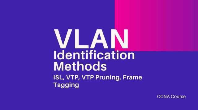 vlan identification methods