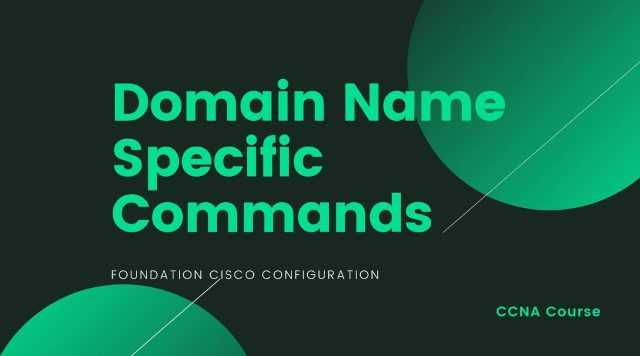 Domain Name Specific Commands