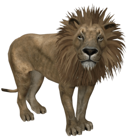 Explore these Google Search 3D Animals and Objects for Fun and Education